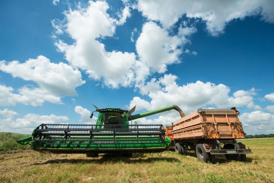 Bez problema prodao ukradenih 25 tona pšenice!