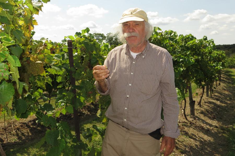 Priznati konstruktor Krešo Mikulić oduševio Amerikance i s vinima