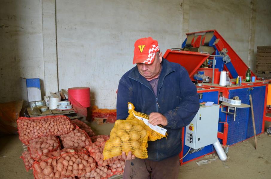 Uzgajaju krumpir: Sreća je imati dobrog kupca!