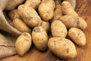 Zaštita krumpira nakon nicanja
