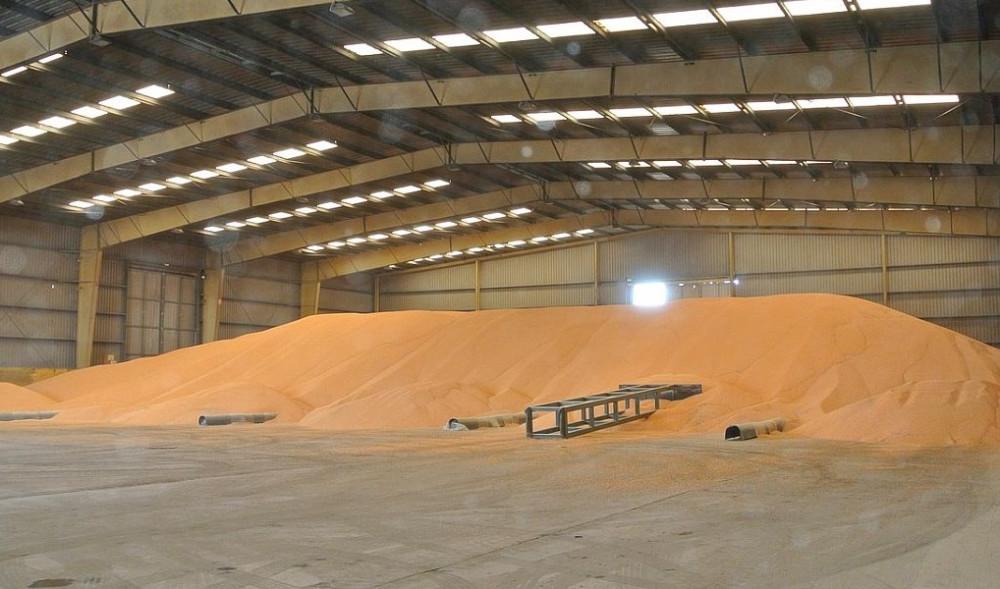 Cijena kukuruza u studenom dosegla minimum!