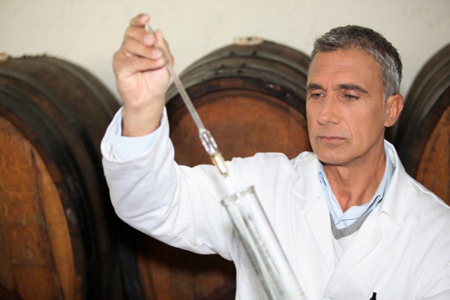 Kupažiranje za bolji kvalitet vina