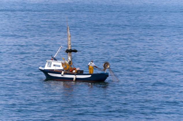 Kvote za 10 komercijalno najvažnijih vrsta riba