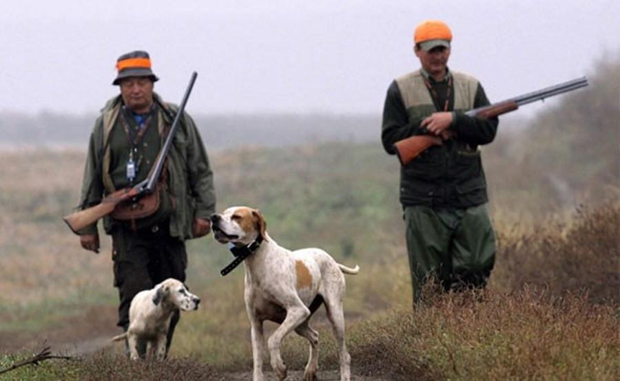 Klaonički otpad u lovištima Hercegbosanske županije