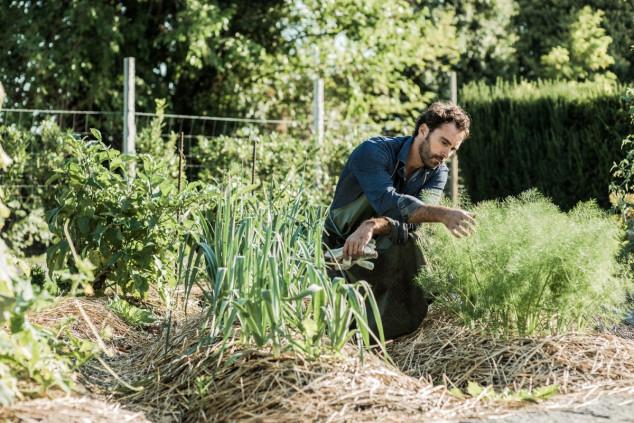 Pravo vrijeme za malčiranje i zaštitu biljaka