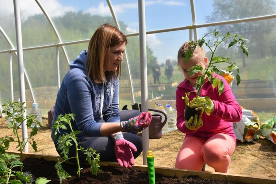 Učenici stvaraju tradicijski zagorski vrt