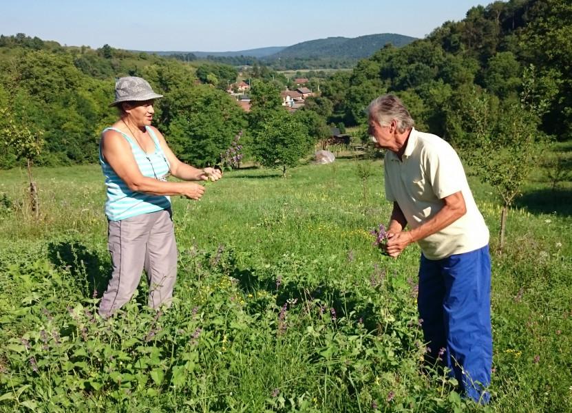 Poljoprivreda liječi - vitalni uz eko hranu i rad!