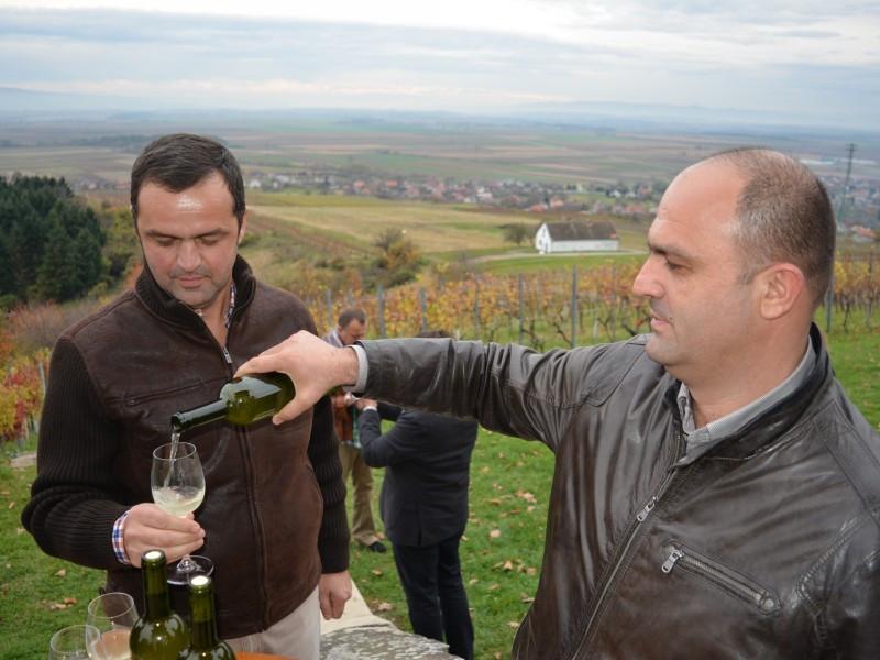 Kutjevo traži od ministra kontrolu vina
