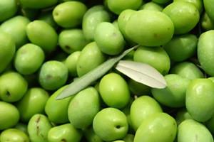 Promocija maslinovog ulja