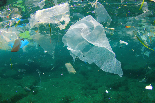 Koliko ribe, toliko plastike?