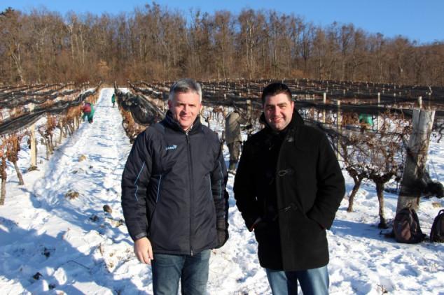 Mladi poljoprivrednici polažu nade u pomoć iz EU