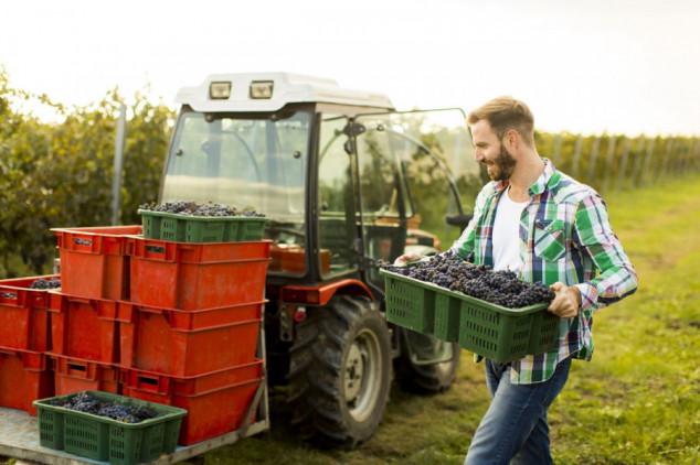 Usvojena reforma Zajedničke poljoprivredne politike