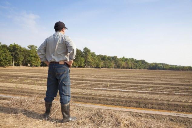 Mladi poljoprivrednici i ZPP