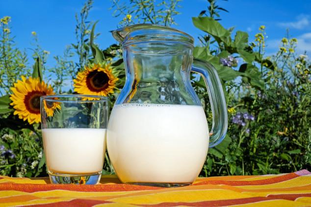 Broj mljekara sa 60 tisuća pao na svega 7 tisuća