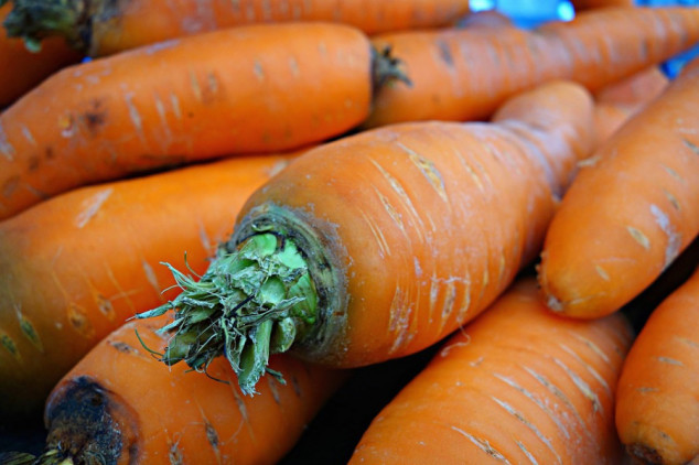 Zaštita povrća od nematoda korjenovih kvržica