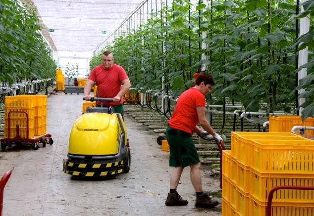 Njemačka kao primjer poljoprivredne budućnosti