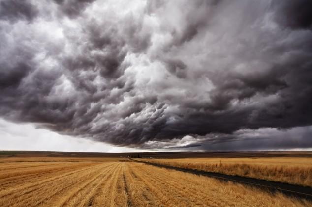 Procena šteta u poljoprivredi još traje