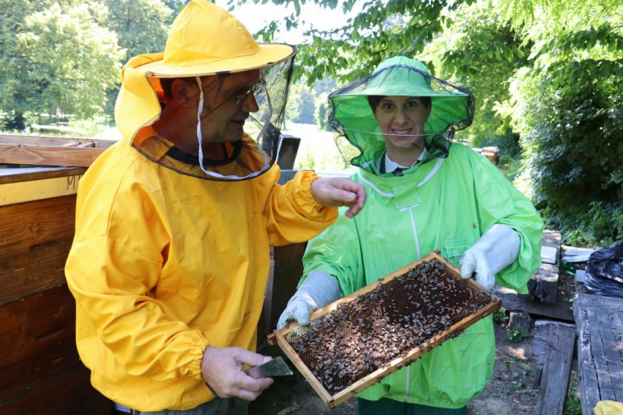 Srditi med s OPG-a Lončarić - prvi začin na bazi meda!