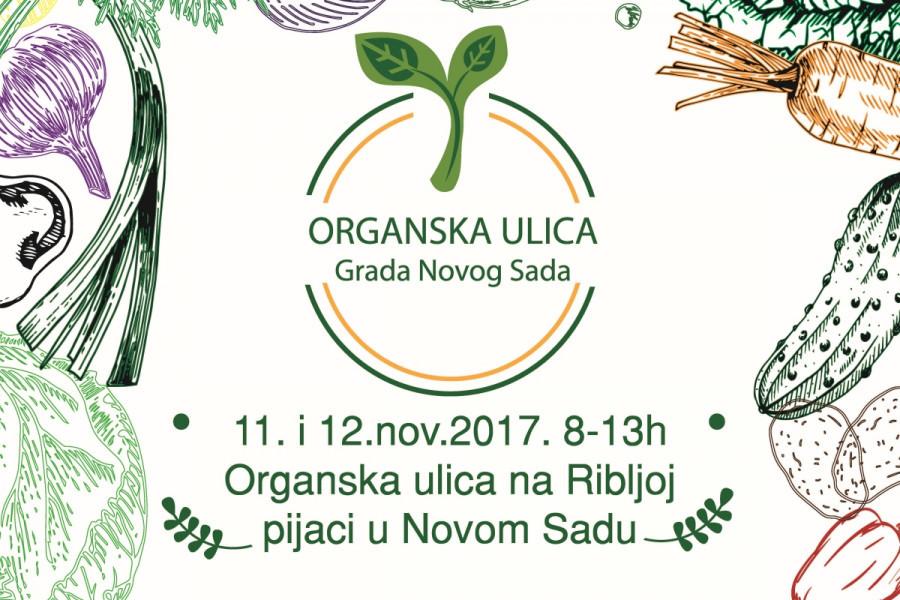 Organska ulica grada Novog Sada