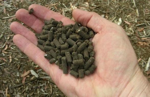 Proljetna gnojidba u ekološkoj proizvodnji