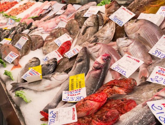 Svaka peta riba je lažno označena!