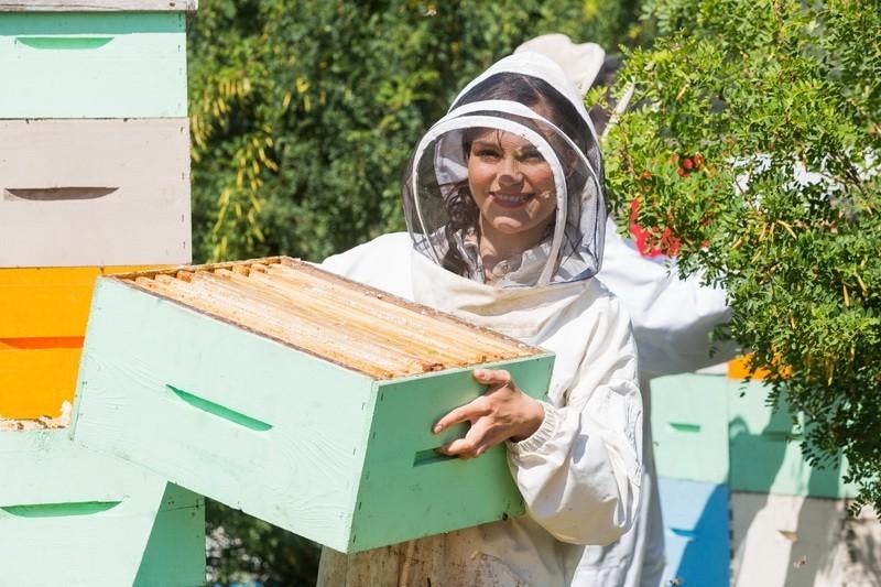 IT pomaže pčelarima!