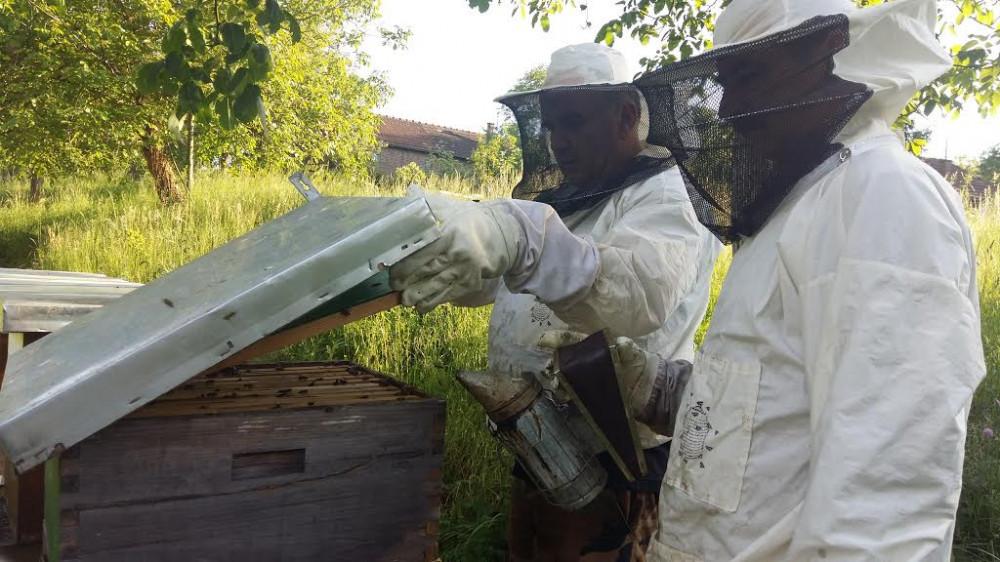 Pčelari se udružili u proizvođačku organizaciju