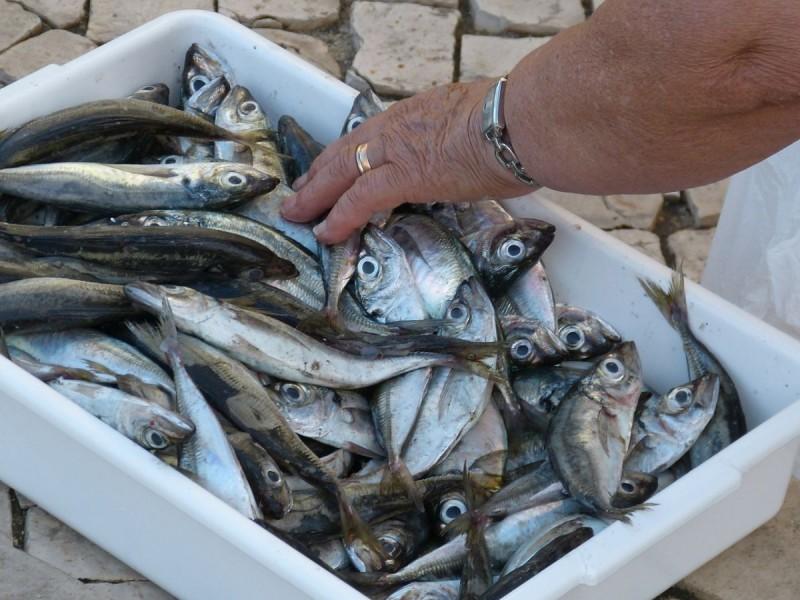 Rekordna potrošnja ribe po glavi stanovnika