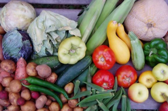 Tržište eko-hrane veće od proizvodnje