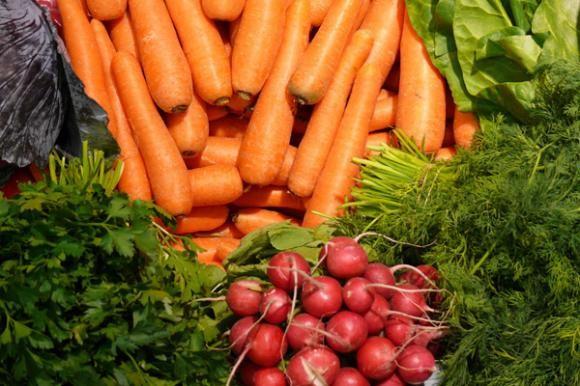 Postrni uzgoj povrća