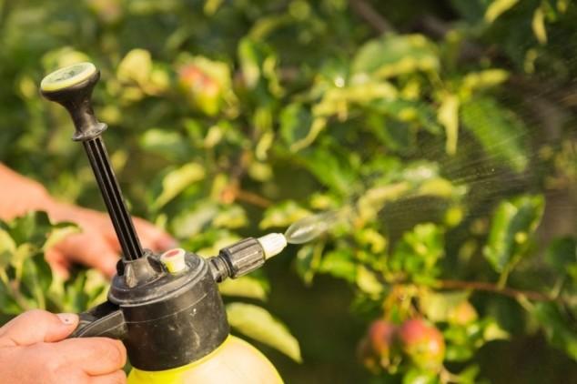 Folijarna prihrana za rast i kvalitetu voća!