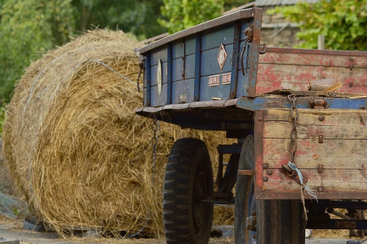 Inter-Agrar servisna radionica na Čeneju! (51505)