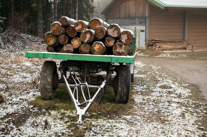Kako spriječiti ilegalnu trgovinu drva?