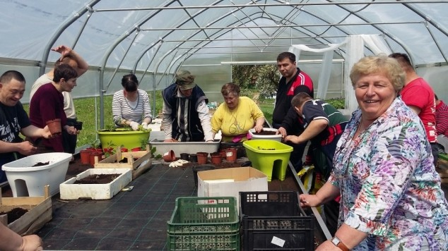 Poljoprivreda kao radna terapija?