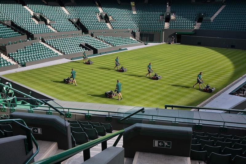 10 zanimljivosti o travi Wimbledona