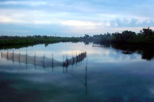 U Srbiji se gasi sve više ribnjaka