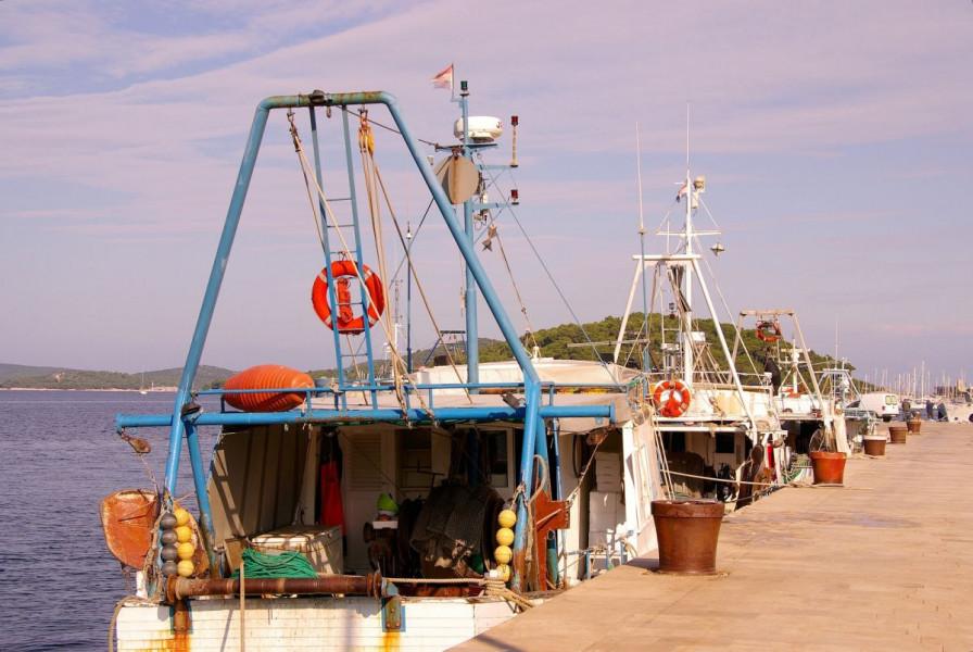 Novi režim ribolova u Jabučkoj kotlini!