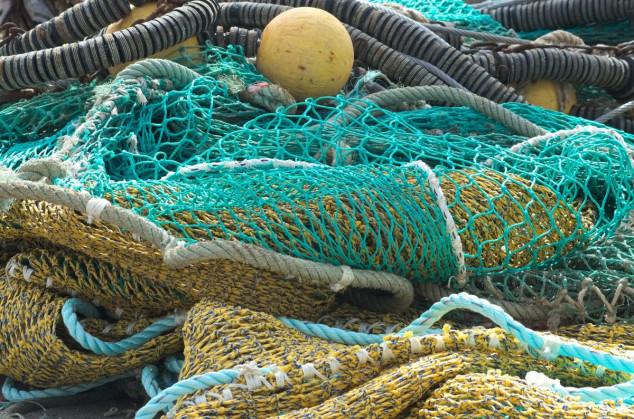 Javnost o trajnom prestanku ribolovnih aktivnosti