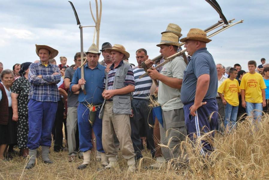 Rogoljska žetva - kako se nekad živjelo i radilo na selu