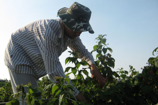 Primedbe poljoprivrednika na propise