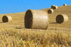 Poljoprivrednici iz EU-a izvukli 176 milijuna