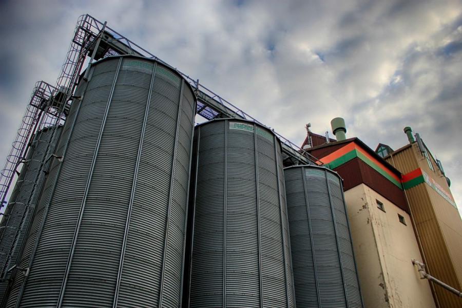 Cijena kukuruza u studenom bila 1,02 kn/kg