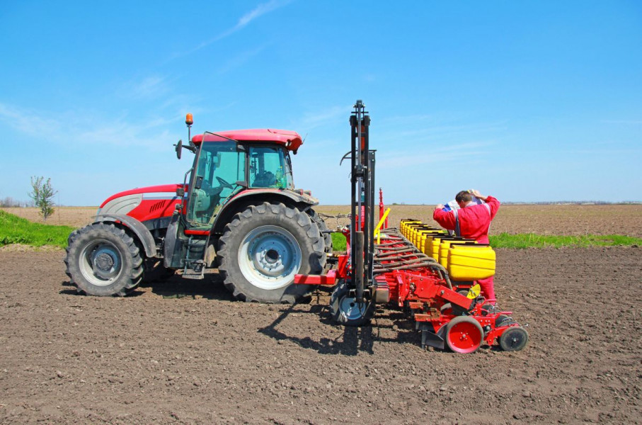Koji hibridi kukuruza daju i prinos i stabilnost?