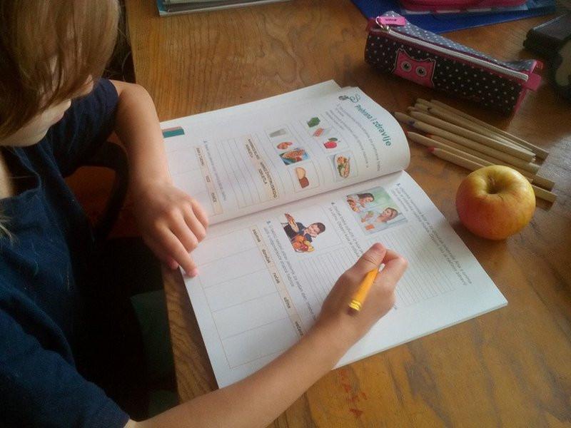 1.119 škola sudjeluje u Školskoj shemi