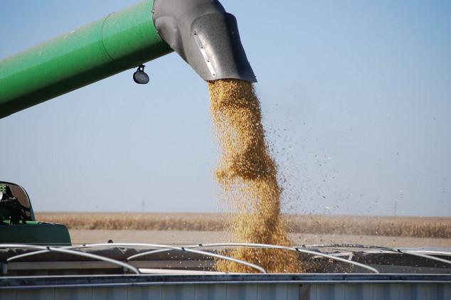 Ukrajina udvostručila izvoz soje u EU