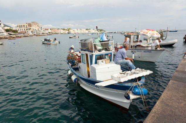 Anonimni ribar darovao srdele siromašnima