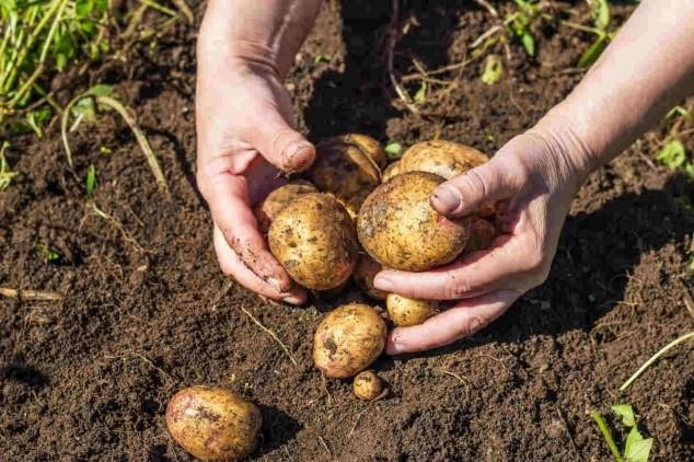 Poljoprivrednici na prvom mestu