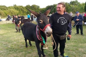 Magarica Alfa šampionka Smotre istarskih magaraca