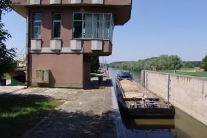 Talas zagađene vode stigao do Bečeja