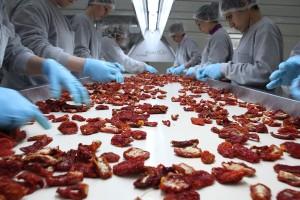 Turska snabdeva evropske zemlje sušenim paradajzom